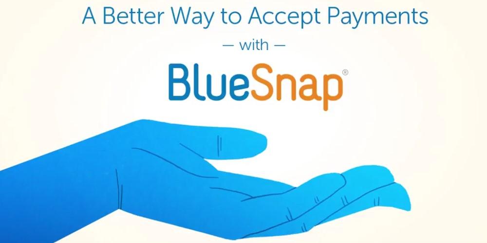 Bluesnap Pay