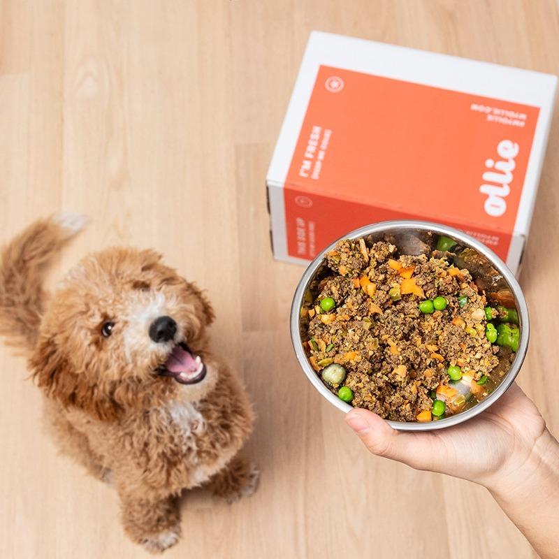 Dog Food Singapore